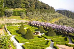 Villa paolina versilia location eventi matrimoni